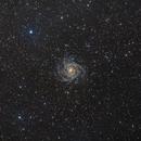 IC 342 - The Hidden Galaxy,                                Ron