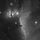 Horse head nebula - Halpha,                                Thibault Sandre