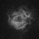 NGC2237 The Rosette Nebula,                                SmackAstro