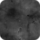 IC1396,                                Terry