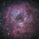 Rosette Nebula,                                Knut Hagen