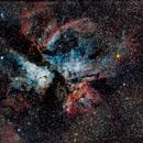 NGC 3372, The Carina Nebula,                                Steven Richards