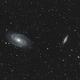 M81 M82,                                Paul May