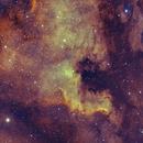 NGC7000,                                Kenneth Hoynes