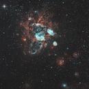 NGC1763,                                Chris Vaughan