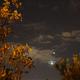 Autumnal conjunctions,                                gigiastro