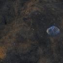 NGC688 and Neighbourhood,                                NewfieStargazer