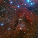 NGC 1999,                                Giuseppe Donatiello