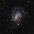 NGC 6140 - Barred Spiral in Draco,                                Ian Gorin