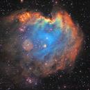 NGC 2174 Monkey Head Nebula,                                Vadim Kozatchenko
