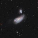 Cocoon Galaxy - NGC4490,                                Uros Gorjanc
