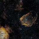 SH 2-129 + Elephant Trunk Nebula Landscape Mode,                                Jim Matzger