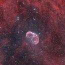 Crescent Nebula,                                Muhammad Ali