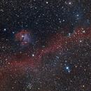 IC2177 Seagull Nebula V1. DSLR IMage,                                Kees Scherer