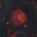Meissa Nebula SH2-264,                                Martin Mutti