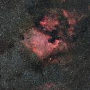 NGC7000,                                Armel FAUVEAU