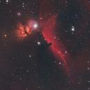 M42 and Horsehead Nebula,                                Chad Andrist