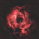 Rosette Nebula - through the clouds,                                urmymuse