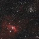 Nebulosa Bolla e ammasso sale pepe,                                Andrea Losi