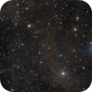 NGC6951 and some dark molecular clouds,                                Bart Delsaert