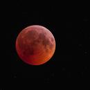 Total Lunar Eclipse - 2019,                                  Robert Eder