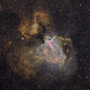 Swan Nebula M17 in narrowbands HST,                                David Nguyen