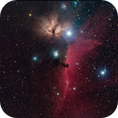 Horsehead Nebula IC434 and B33,                                Albert van Duin