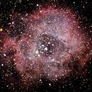 NGC 2244 - Rosette Nebula,                                Tyler Black
