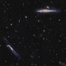 Old Mornings Dawn (Whale and Crowbar Galaxies--NGC 4632 & NGC 4656),                                  R̲e̲z̲a̲ ̲H̲a̲k̲i...