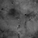 Trunk Nebula - 2 panels mosaic,                                Alessio Pariani