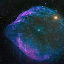 Dolphin Head Nebula (Sh2-308, LBN 1052, RCW 11),                                Gary Lopez