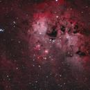 Tadpoles Nebula (IC410) HOO-RGB blend,                                Kristian Vasskog