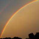 Double Rainbow,                                Steven Bellavia