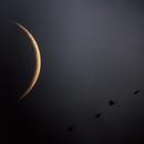 Winter Moon,                                Neil Emmans