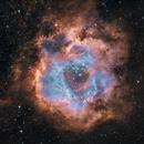 Rosette Nebula in HOO,                                Simon d'Entremont