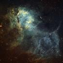Lion Nebula Sh2-132,                                chuckp