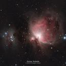 Orion Nebula,                                Kristopher Setnes
