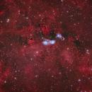 Running Man in Cygnus NGC6914,                                Göran Nilsson
