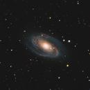 M81 Bode's Galaxy - M82 Cigar Galaxy 20210417 53040s LHaGB 01.6.3,                                Allan Alaoui