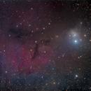 IC348,                                Annette & Holger