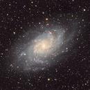 The Triangulum Galaxy M33 NGC 598,                                Marc Dickinson