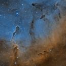 IC 1396 Elephant's Trunk nebula,                                Rolandas_S