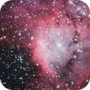 NGC 2467 – The Skull and Crossbones Nebula,                                Terry Robison