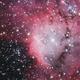NGC 2467 – The Skull and Crossbones Nebula,                                Terry Robison