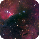 Sh2-140 (AP-175) - Deep Sky West Remote Observatory,                                Deep Sky West (Lloyd)