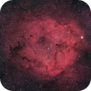 IC 1396 @ Ha-HaGB, crop,                                Wolfgang Zimmermann
