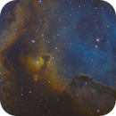 IC1871 SHO 2 Panel Mosaic,                                Christopher Gomez