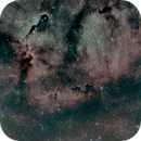IC1396 Elephants Trunk Nebula,                                Jan Monsuur