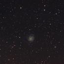 Messier 101 - Pinwheel Galaxy and friends,                                LittleKing