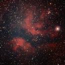 IC 1318,                                MartinFournier